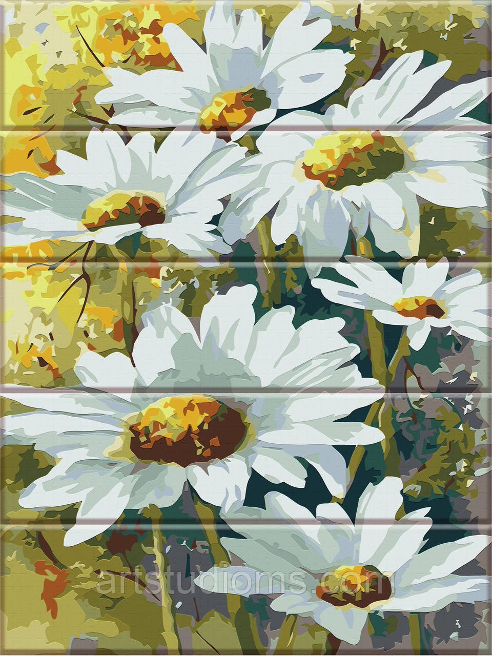 Картины по номерам на дереве Ромашки 30х40см, С Коробкой, красками и кистями