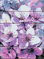 """Картины по номерам на дереве """"Первоцвет"""" 30х40см, С Коробкой, красками и кистями"""