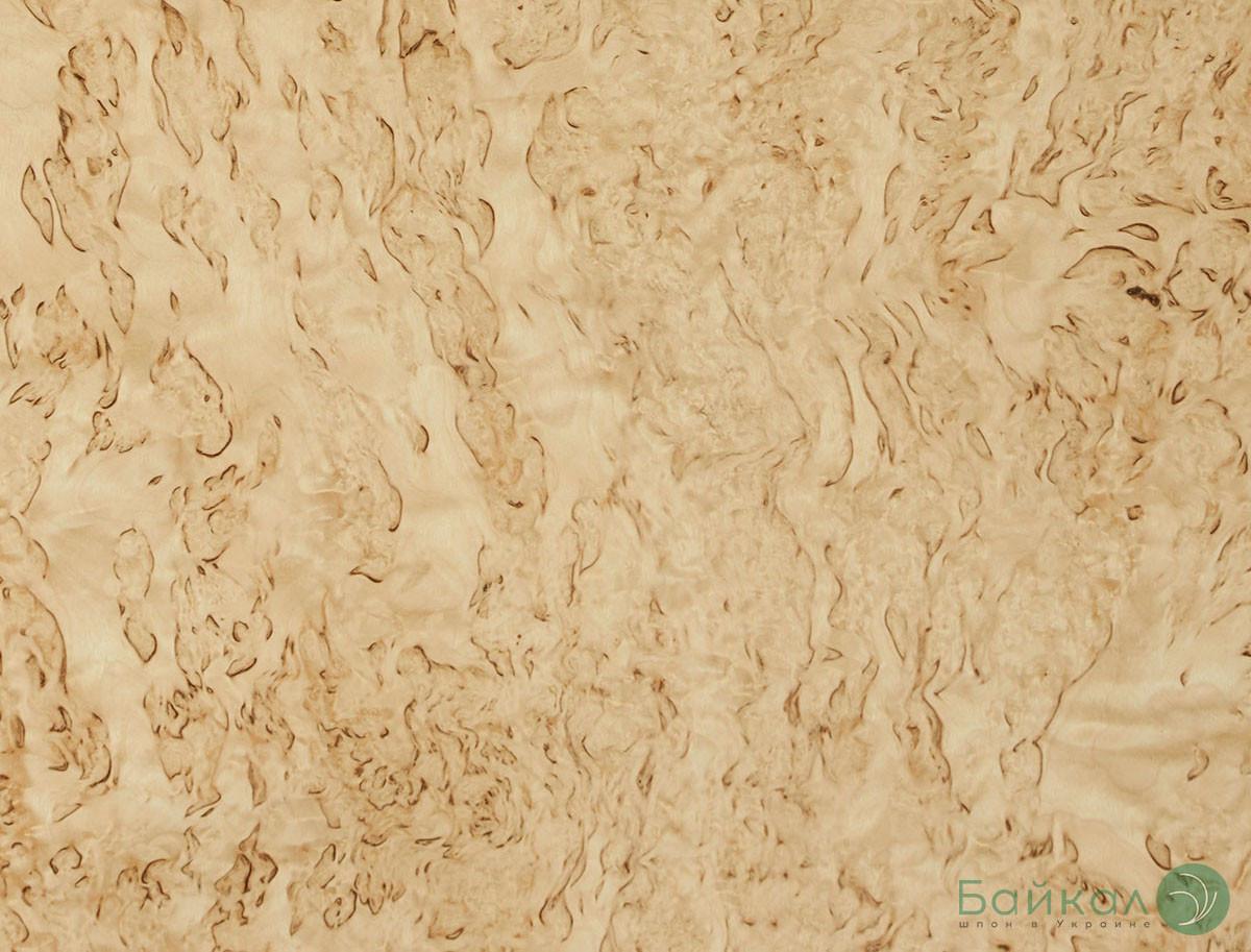 Шпон корень Карельской Березы 0,6 мм - Logs