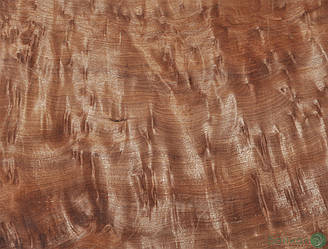 Шпон корінь Вавон 0,6 мм - Logs