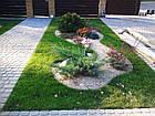 """Садовый бордюр """"Екобордюр"""" тип2  економ (10м) зелёный, фото 5"""