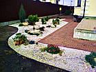 """Садовый бордюр """"Екобордюр"""" Оптимальный (20м) ТИП2 коричневый, фото 3"""
