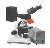Люминесцентный бинокулярный микроскоп MCX 300 Orchid HBO