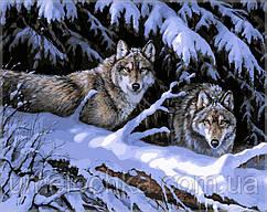 Картина по номерам Babylon Волки в лесу
