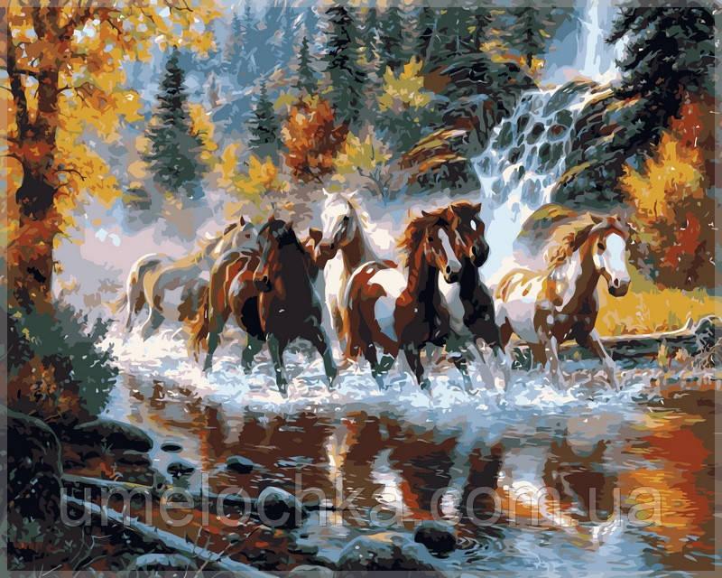 Картина по номерам Babylon Дикие лошади
