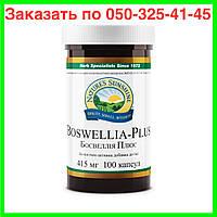 Босвелия Плюс (Boswellia Plus) НСП. Босвелия Плюс NSP. Спортивные витамины для суставов и связок