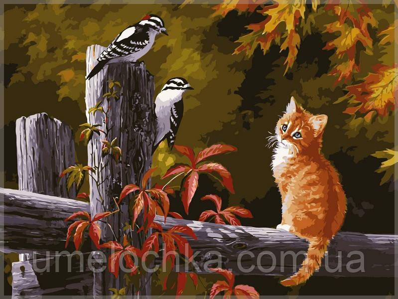 Картина по номерам Babylon Котенок и птички на заборе