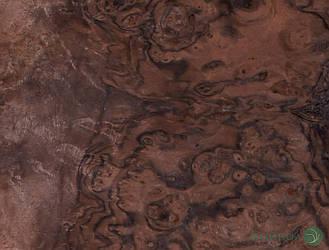 Шпон корінь Горіх Американський 0,6 мм - Singl