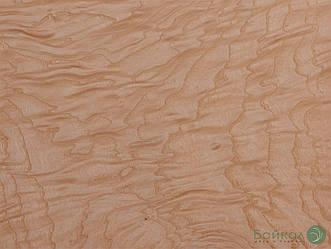 Шпон корінь Ясен Білий 0,6 мм - Singl