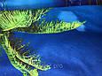 Полотенце банное Море, фото 2