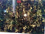Lemurian Supreme, фото 2