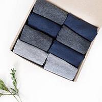 Набор мужских демисезонных носков № 10 Арт. 4168