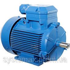 Взрывозащищенный электродвигатель 4ВР63В2 0,55 кВт 3000 об/мин (Могилев, Белоруссия), фото 3