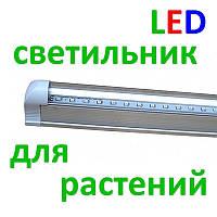Светодиодный (LED) светильник для растений ФИТО Т8 220В, фото 1