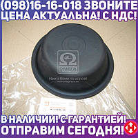 ⭐⭐⭐⭐⭐ Мембрана камеры торм. тип-20 (глубокая) DAF, IVECO, МAН <ДК>  04703594