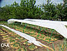 Агроволокно белое 19 г/м2  6.35х100м, фото 5