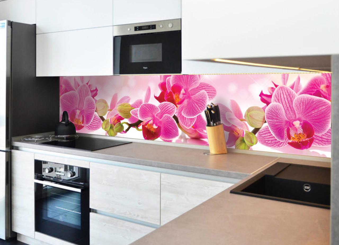 Кухонный фартук Розовая орхидея (кухонные фартуки для кухни на стену фотопечать, скинали, цветы)