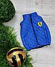 Жилетка Феррари для мальчика, 2-5 лет, цвет - электрик