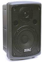 Активна акустична система SOUNDKING SKFP208A, фото 1