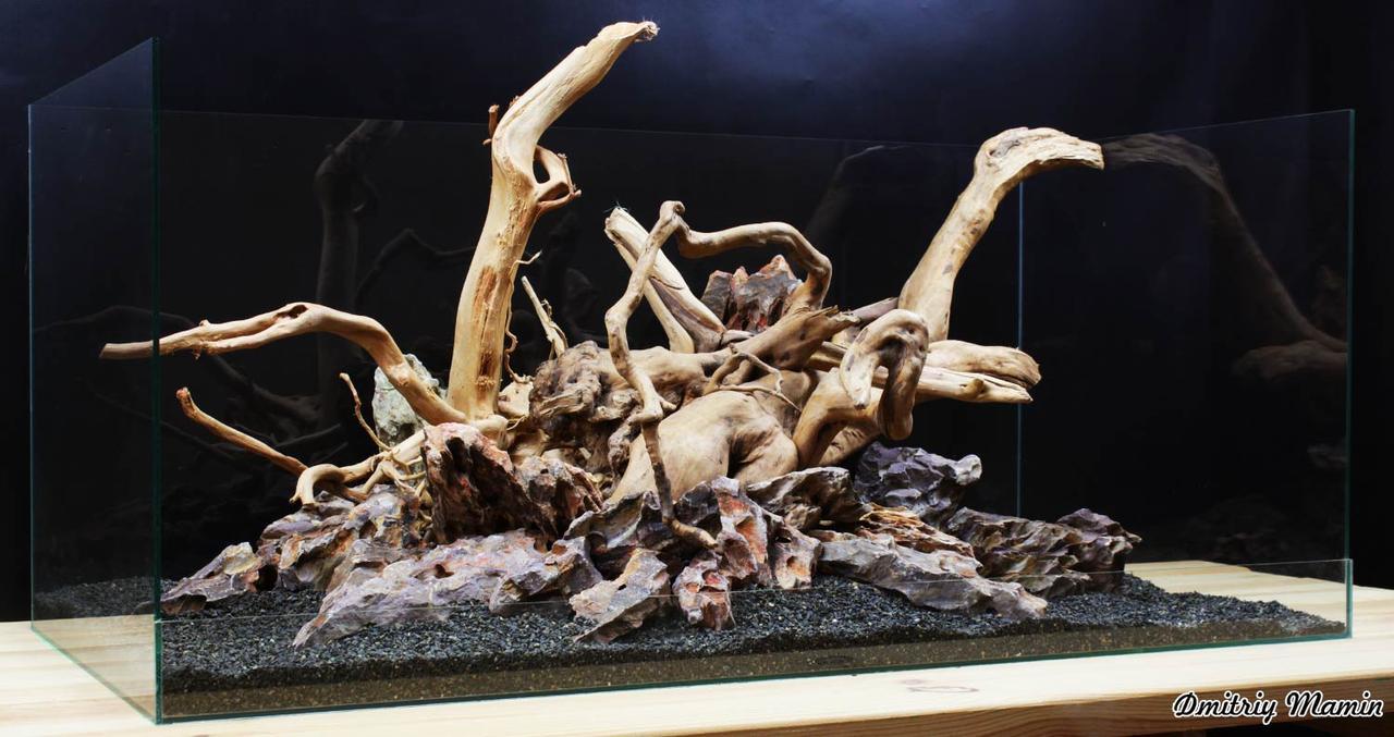 Композиция для аквариума из Дракона и азалии