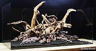 Композиция для аквариума из Дракона и азалии, фото 1