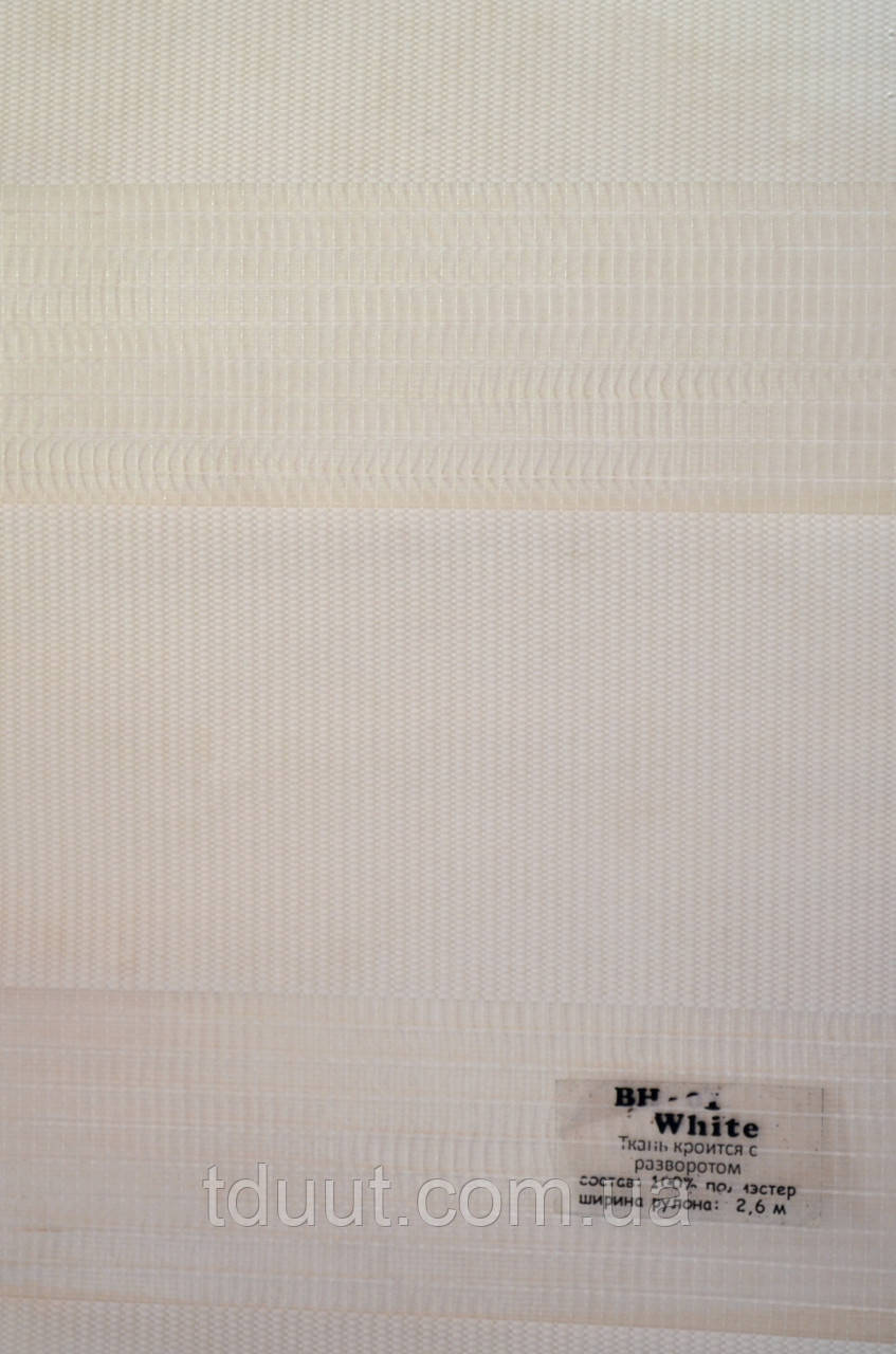 Рулонні штори день-ніч білі BH-01