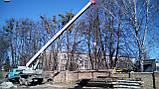 Демонтаж зданий Киев,планировка участка, фото 3