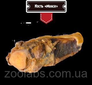 Мясная кость Alpha Spirit для собак 20 см (макси)
