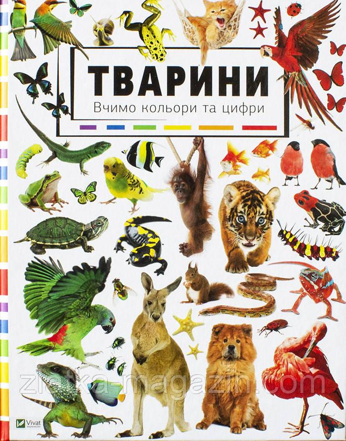 Тварини. Вивчаємо кольори та цифри - Мария Жученко (9786176909255)