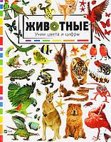 Животные. Учим цвета и цифры - Мария Жученко (9786176909248), фото 1