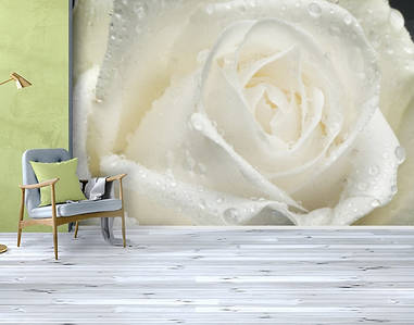 Фотошпалери, Квіти Вініл текстурований, 250х380 см, fo01inV_fl10637