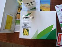 Семена кукурузы Трофи F1 (Trophy F1)  5000 семян Seminis