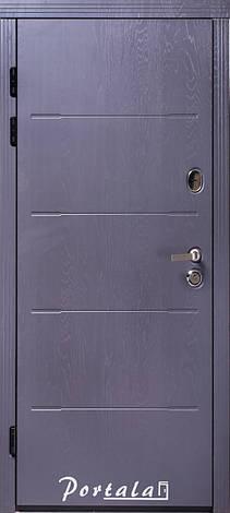 Двери квартирные, серия Премиум, модель Токио2, гнутый профиль, коробка 150 мм, полотно 105мм,  KALE257, фото 2