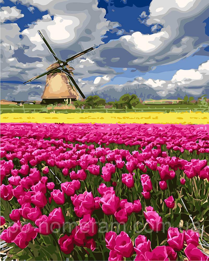Картина раскраска Мельница в поле тюльпанов (BRM27313) 40 ...