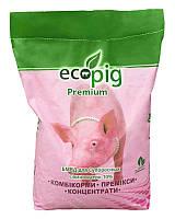 БМВД ECOPIG PREMIUM для супоросних свиноматок 10%
