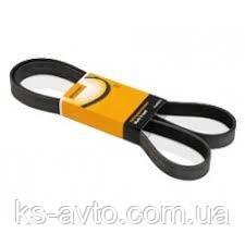 Ремень дорожковый  CONTITECH 5PK1635