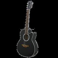 Акустическая гитара Trembita L-01
