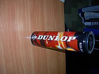 Мячи для большого тенниса DUNLOP Smash Roland Garros