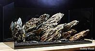 Массивная композиция из Дракона для аквариума от 200л, фото 1