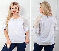 d94202ac9d3 Стильные блузки больших размеров оптом в Украине. Сравнить цены ...