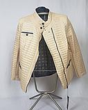 Стьобана куртка демісезонна бежева великі розміри, фото 5