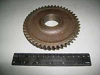 Шестерня привода маслянного насоса Z-46 Д-240 50-1005033