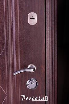 Двери уличные, серия Люкс, VINORIT, модель Шампань, гнутый профиль, коробка 100 мм, полотно 76 мм, Гардиан, фото 2
