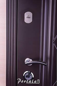 Двери уличные, серия Люкс, крашенный МДФ, модель Шампань, гнутый профиль, коробка 100 мм, полотно 76 мм, фото 2