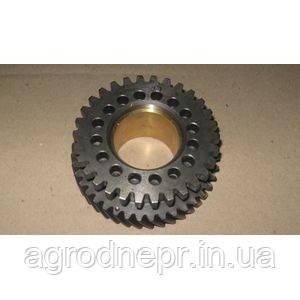 Шестерня привода ТНВД Д-240 240-1006311 /240-1006312