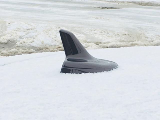 Акулий плавник накладка