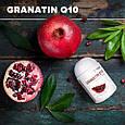 Гранатин Q10 - замедляет процессы старения, профилактика сердечно-сосудистых заболеваний, фото 4