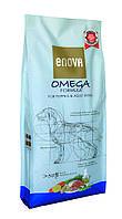 ENOVA Omega Formula 1 2 кг