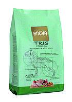 ENOVA Tris Formula  12 кг