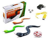 """Змея на управлении """"Rattle snake"""""""